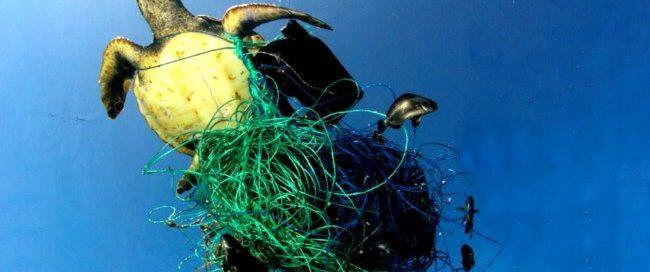 Plastika Zagadjuje Okeane