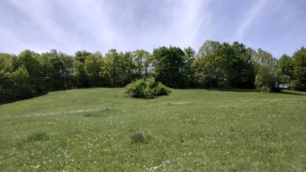 Joga na Rajcu - Jun 2020